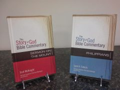 Something for Everyone: The Story of God Bible Commentary
